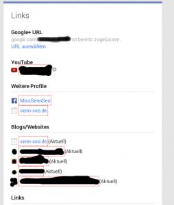 Rubrik Links bei Google+ für Verifizierung mit der eigenen Website